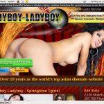 Free Ladyboy Ladyboy Id