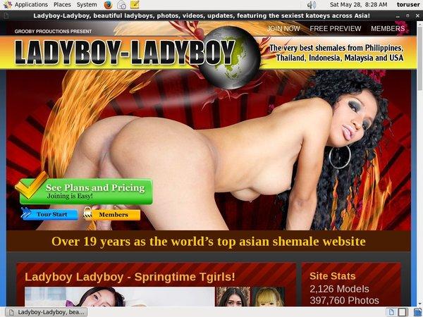 Paypal For Ladyboy Ladyboy
